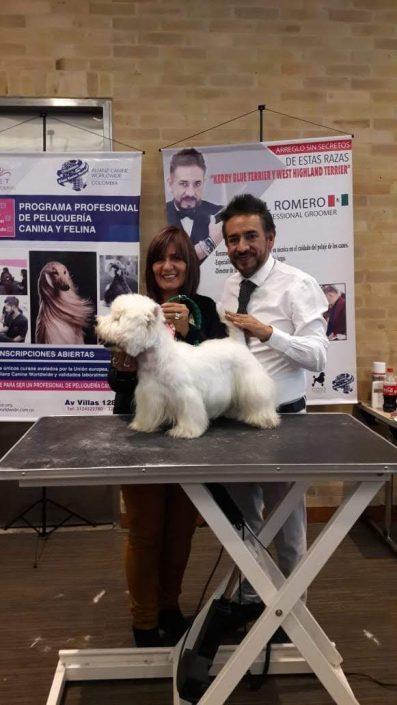 peluqueria veterinaria caninca cali