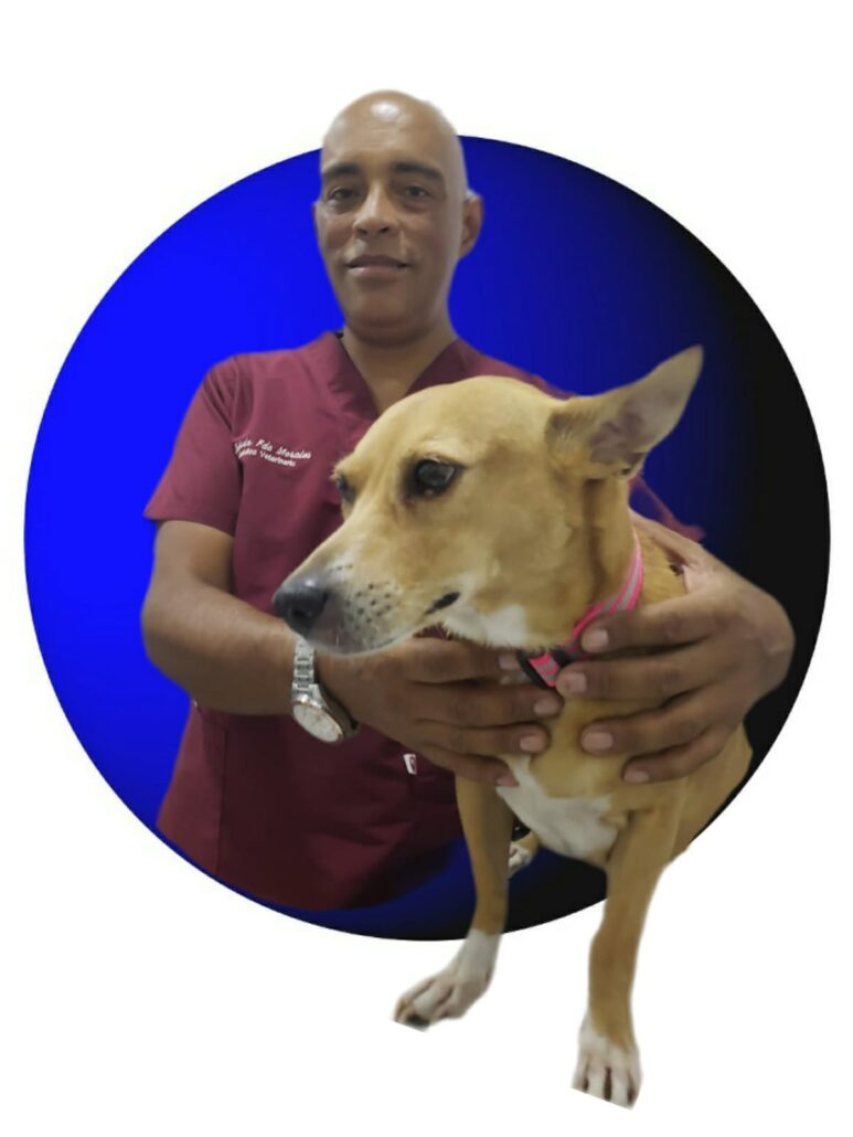 clínica veterinarias en Cali